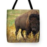 Bison Buffalo Tote Bag