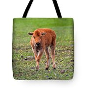 Bison Calf In The Flowers Yellowstone National Park Tote Bag
