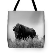 Bison Cow On An Overlook In Yellowstone National Park Black And White Tote Bag