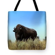 Bison Cow On An Overlook In Yellowstone National Park Tote Bag