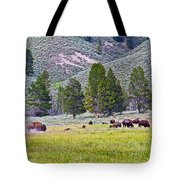 Bison Kicking Up Dust In The Meadow In Yellowstone National Park-wyoming  Tote Bag
