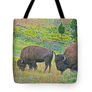 Bison Pair In Hayden Valley In Yellowstone National Park-wyoming  Tote Bag