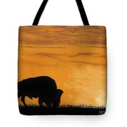 Bison Sunset Tote Bag