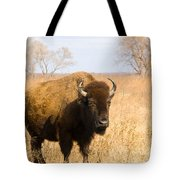 Bison Tall Grass Tote Bag