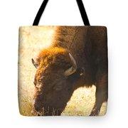 Bison Wander Tote Bag