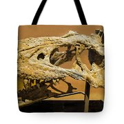 Bistahieversor Dinosaur Skull Fossil Tote Bag