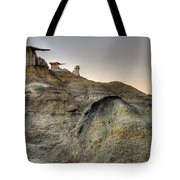 Bisti De-na-zin Wings Tote Bag