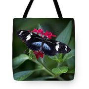 Black And Blue Butterfly Tote Bag