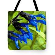 Black And Blue Salvia Tote Bag
