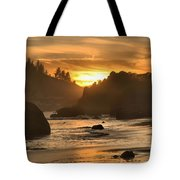 Black And Orange Tote Bag by Adam Jewell