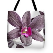 Black And Purple Orchid Tote Bag