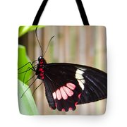 Black And Red Cattleheart Butterfly Tote Bag