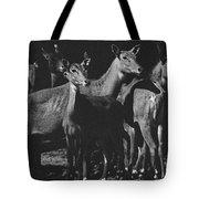 Black And White Antelopes Tote Bag