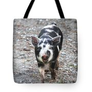 Black And White Baby Pig Tote Bag