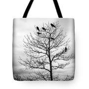 Black And White Blackbirds  Tote Bag