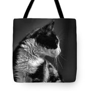 Black And White Cat In Profile  Tote Bag