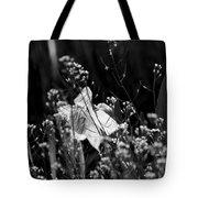 Black And White Daffodil Tote Bag