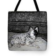 Black And White Dog Tote Bag