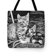 Black And White Kittens Tote Bag