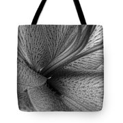 Black And White Lily Z Map L Tote Bag