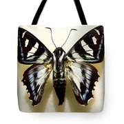 Black And White Moth Tote Bag