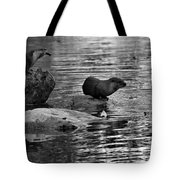 Black And White Otters In The Wild Tote Bag