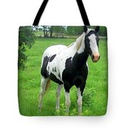 Black And White Paint Horse Tote Bag