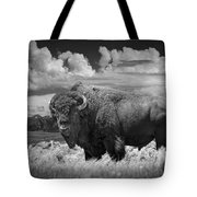 Black And White Photograph Of An American Buffalo Tote Bag