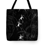 Black And White Quad Ghost Orchid Tote Bag