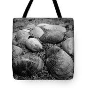 Black And White Seashells Tote Bag
