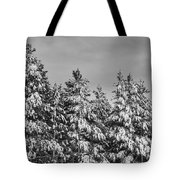 Black And White Snow Covered Trees Tote Bag