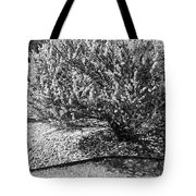 Black And White Spring Tote Bag