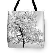 Black And White Square Tree  Tote Bag