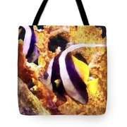 Black And White Striped Angelfish Tote Bag