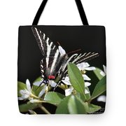 Black And White Swallowtail Square Tote Bag