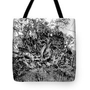 Black And White Uprooted Tree Tote Bag