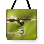 Black And White Widow Skimmer Tote Bag