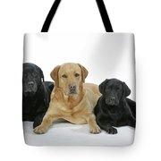 Black And Yellow Labradors With Puppy Tote Bag