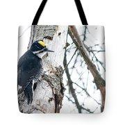 Black-backed Woodpecker Tote Bag