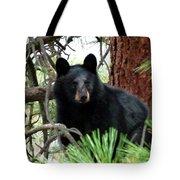 Black Bear 1 Tote Bag