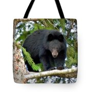 Black Bear 2 Tote Bag