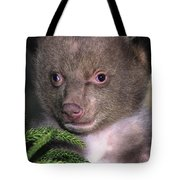 Black Bear Cub Portrait Wildlife Rescue Tote Bag