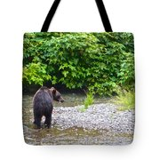 Black Bear Eating A Salmon In Fish Creek In Tongass National Forest-ak Tote Bag