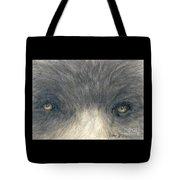 Black Bear Eyes Wildlife Animal Art Tote Bag