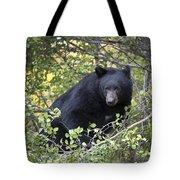 Black Bear II Tote Bag