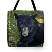 Bear Painting - Scruffy - Profile Cropped Tote Bag