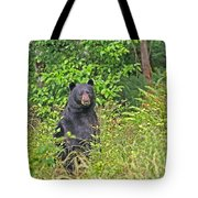 Black Bear Standing Up Tote Bag
