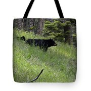 Black Bear With Cub Symetrical On Hillside Tote Bag
