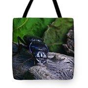 Black Beetle Tote Bag