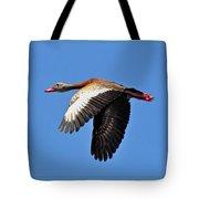 Black-bellied Whistling-duck In Flight  Tote Bag